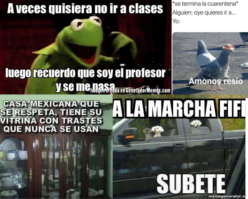 Collage de memes.